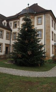389 - 2020_11_30_PM Weihnachtsbaum 2020-Bild 1