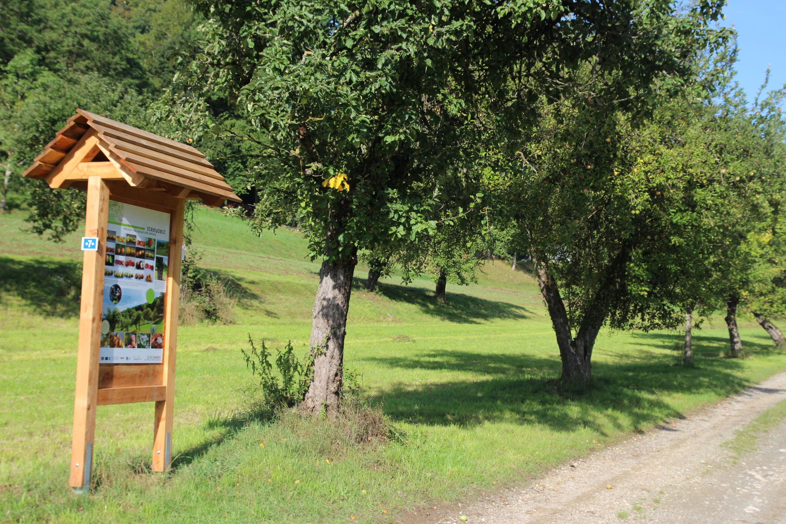 """Die Exkursion der Umweltstation Weismain führt auf dem Natur- und Kulturlehrpfad """"Schlauwienix"""" zu den Besonderheiten des Kordigast. Foto: Umwelts"""