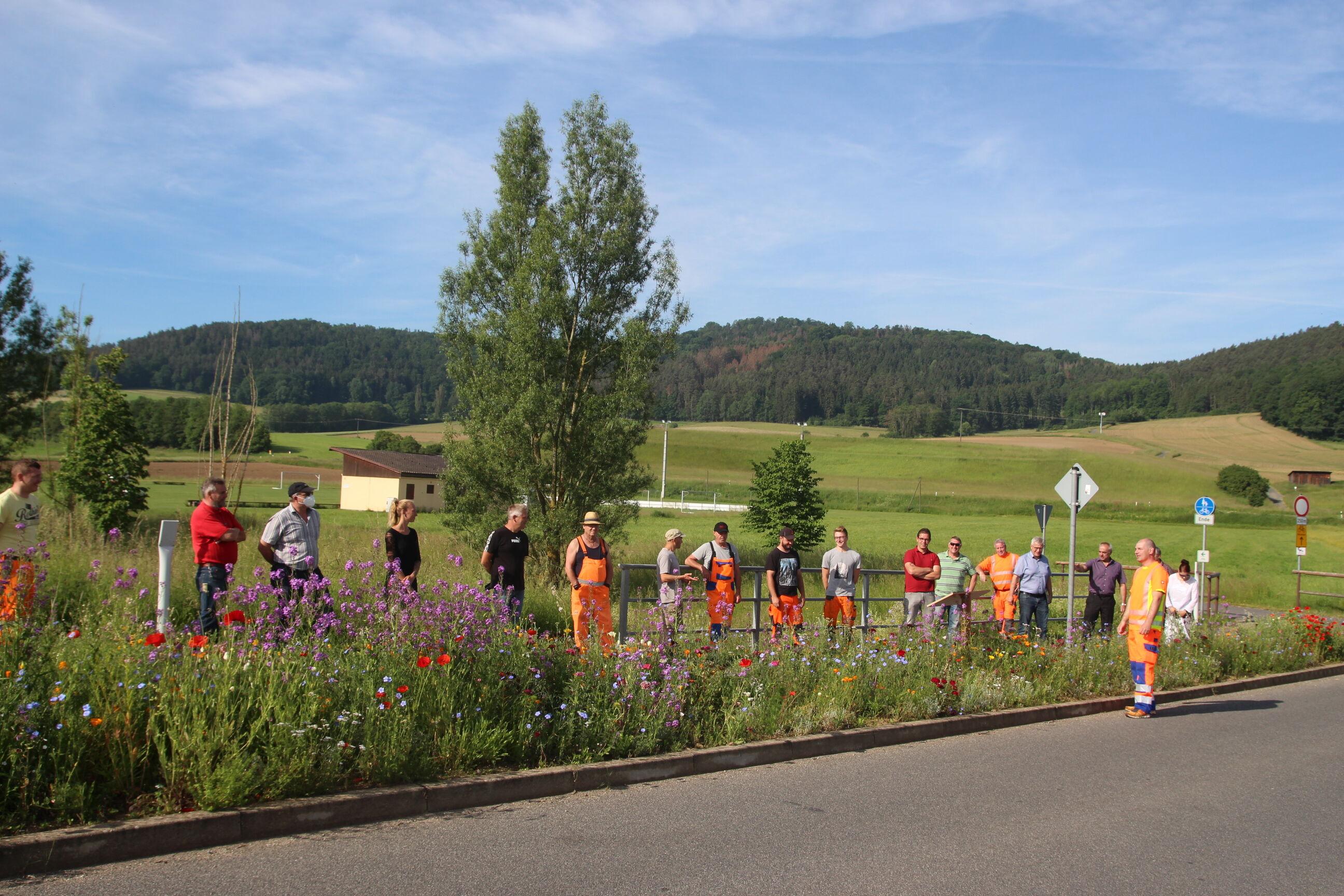 Treffen der Bauhofmitarbeiter/innen zum Thema Blühwiesen. (Foto: Umweltstation Weismain/Michael Stromer)