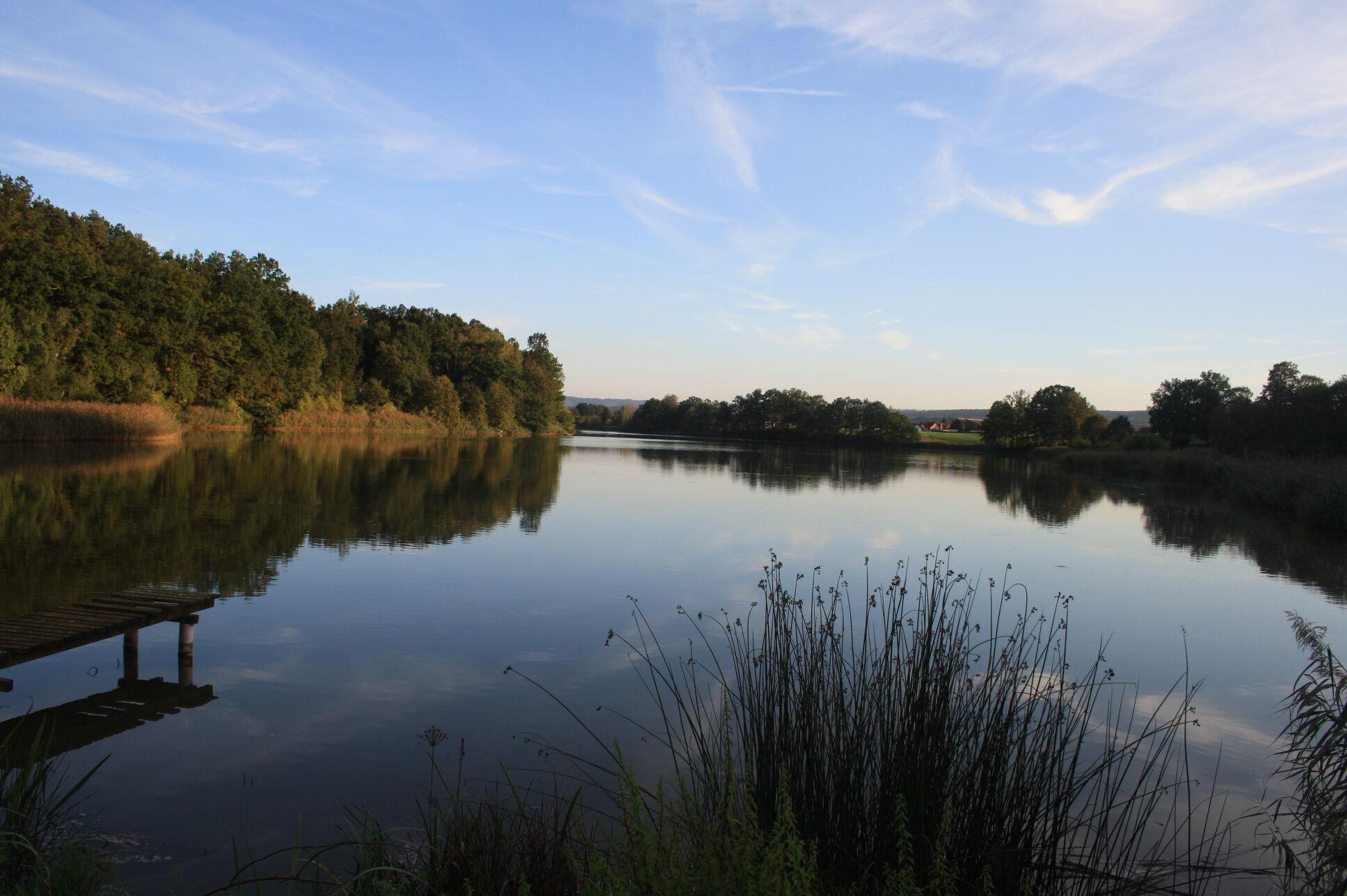 Blick auf den Neuenseer Weiher. Foto: Umweltstation Weismain/Michael Stromer