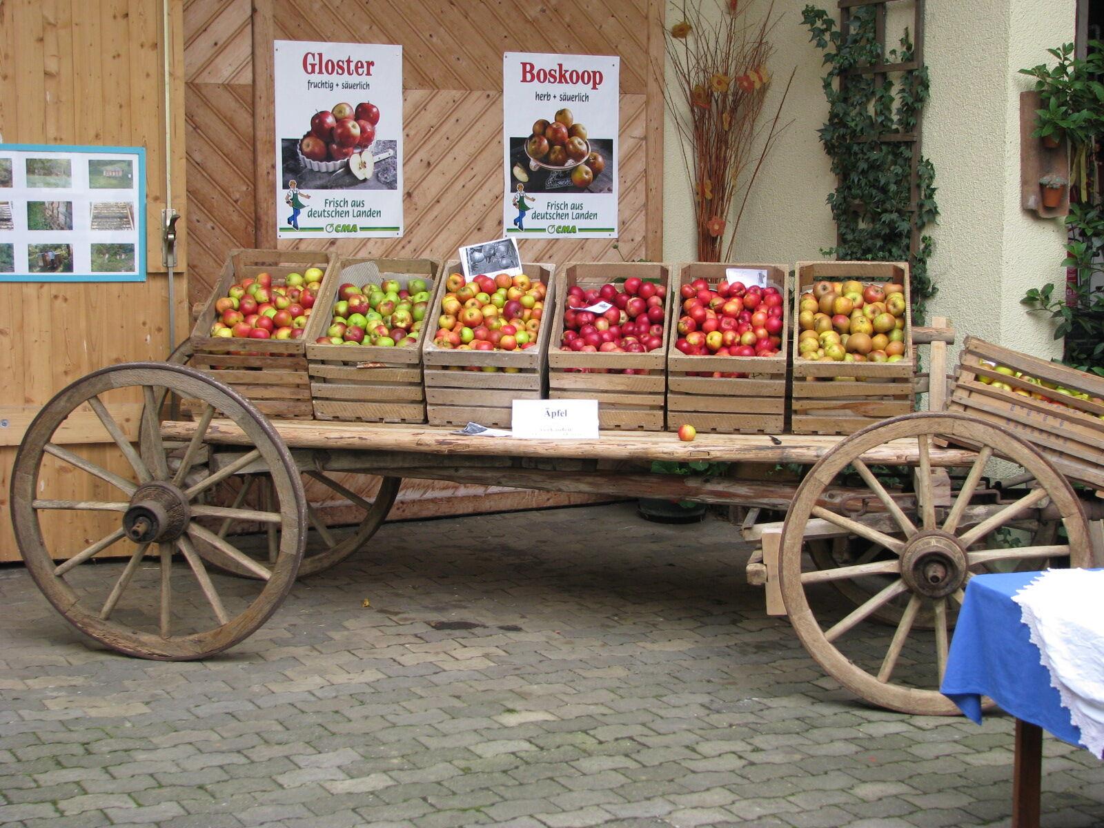 Wer sich mit frischem Obst und Gemüse eindecken möchte, findet Online die Adressen der Direktvermarkter. Foto: Landratsamt Lichtenfels/Michael Stromer