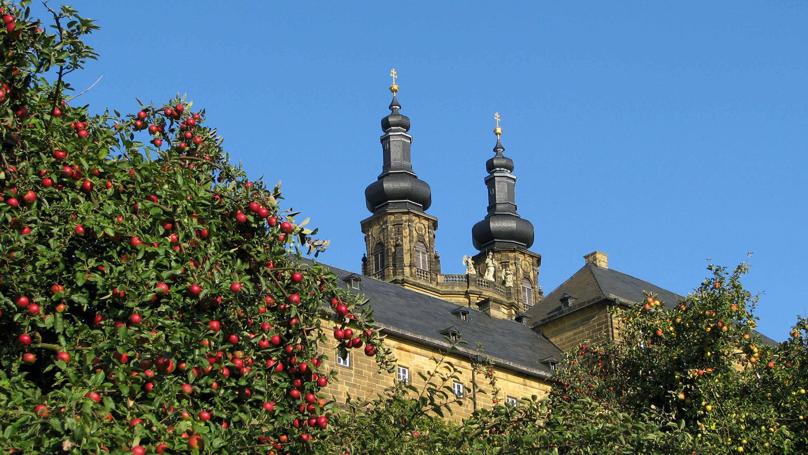 Am Tag der deutschen Einheit steht nachmittags die Obstwiese in Kloster Banz zum Obstpflücken für jedermann offen. Foto: Landratsamt Lichtenfels