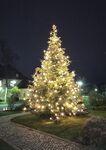 Miniaturbild zu:Pressemitteilung 389-2020: Weihnachtsbaum sorgt am Landratsamt für Adventsstimmung