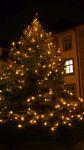 467 - 2017_11_16_PM_Weihnachtsbaum (1)_web