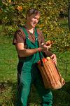 268 - 2018_09_06_PM Banzer Barock und alte Apfelsorten