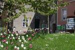 138 - 2019_05_06_PM Weismainer Gartengespräche