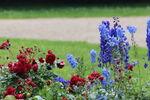 Miniaturbild zu:Pressemitteilung 366-2019: Aufbaukurs für Gartenpfleger