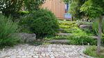 Miniaturbild zu:Pressemitteilung 008-2020: Den eigenen Hausgarten planen
