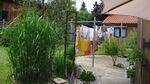 027 - 2021_01_28_PM_Planungsseminar zum eigenen Garten