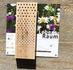 Miniaturbild zu:Pressemitteilung 035-2021: Umwelttipp: Lebensräume von Wildbienen erhalten