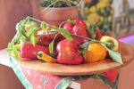Miniaturbild zu:Gartentipp 03-2020: Anzucht von Paprika und Co
